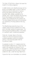 Dog Rock Story