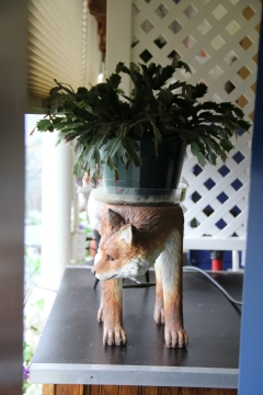 Fox's Cafe, Diane's fox collection