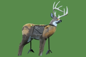 Green background deer 2