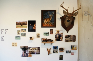 Animal / Hunting section