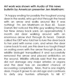 Deer with arrow through head story