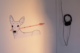 Deer with arrow through mouth - with American news report audio